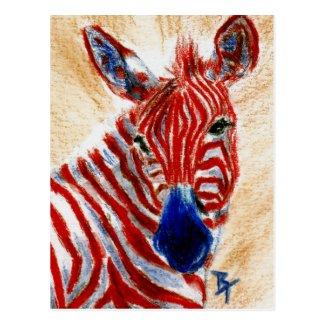 Patriotic Zebra Postcard