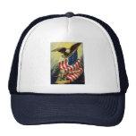 Patriotismo del vintage, bandera americana gorro