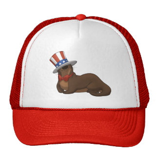 Patriotter Hat