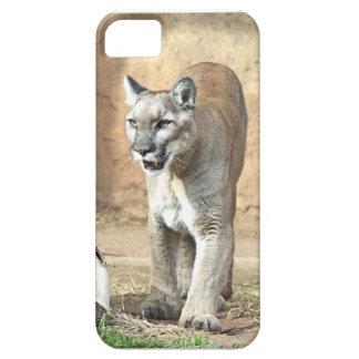Patrolling Puma iPhone SE/5/5s Case