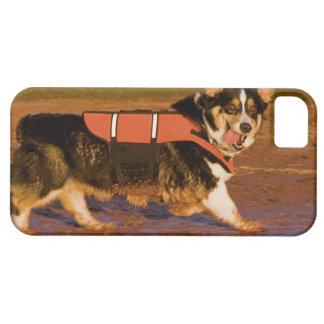 Patrulla del puerto iPhone 5 Case-Mate protector