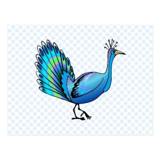Patten Peacock Postcard