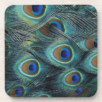 Pattern in male peacock feathers beverage coaster