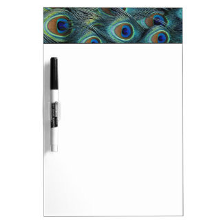 Pattern in male peacock feathers Dry-Erase board