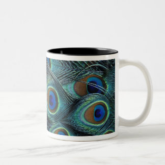 Pattern in male peacock feathers mug