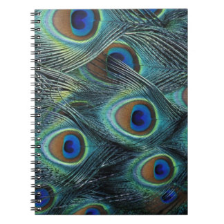 Pattern in male peacock feathers notebook