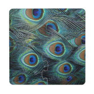 Pattern in male peacock feathers puzzle coaster