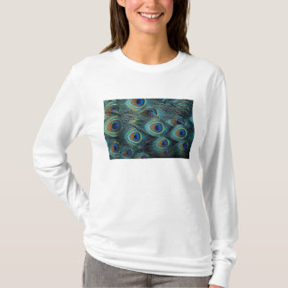Pattern in male peacock feathers T-Shirt