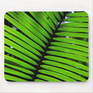 Pattern Of Fern Leaves Mouse Pad