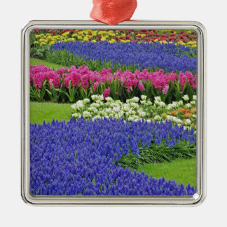 Pattern of Grape Hyacinth, tulips, and 3 Ornament