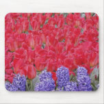 Pattern of hyacinth, tulips, and daffodils, mouse pad