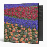 Pattern of tulips and Grape Hyacinth flowers, 3 3 Ring Binders