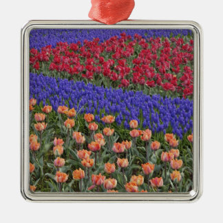 Pattern of tulips and Grape Hyacinth flowers, 3 Christmas Tree Ornaments