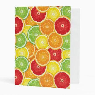 Pattern with citrus fruits mini binder