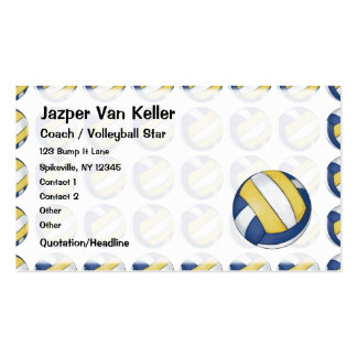 Pattern with Painted Volleyball Double-Sided Standard Business Cards (Pack Of 100)