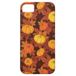 Pattern with pumpkins and autumn maple iPhone 5 case