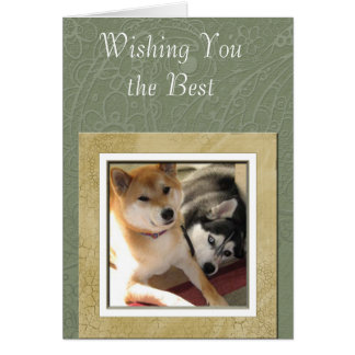Patterned Photo Greeting Card