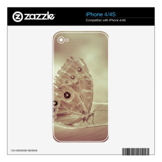 Patterned Wings Butterfly Over Leave iPhone 4 Skins