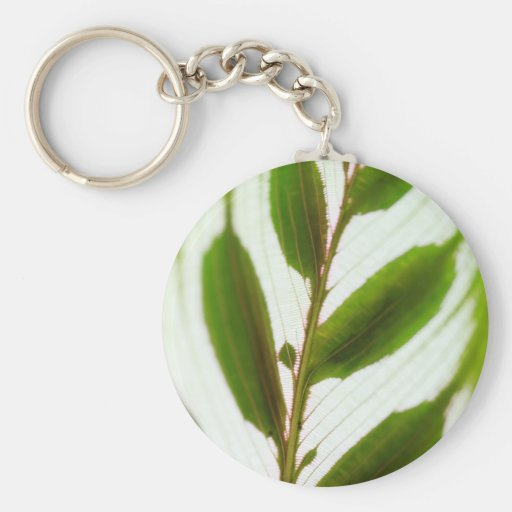 Patterns In Nature Basic Round Button Keychain