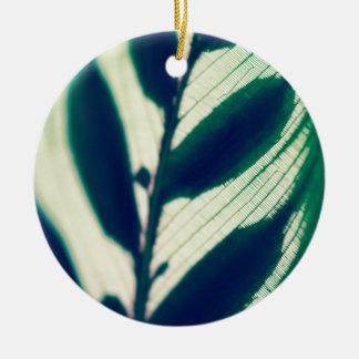 Patterns In Nature Ceramic Ornament