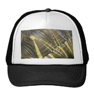 Patterns In Nature Mesh Hats
