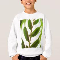 Patterns In Nature Sweatshirt