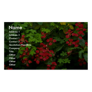 Patterns of nature Double-Sided standard business cards (Pack of 100)