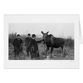 Patting a Moose Photo 1921 Card
