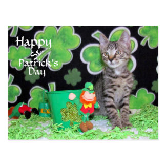 Patton's St. Patrick's Day Postcard (5522)