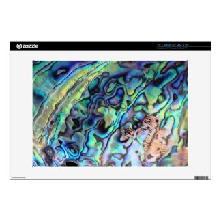 "Paua abalone beautiful shell skin 13"" laptop decals"