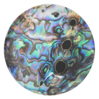Paua abalone blue and green shell detail dinner plate