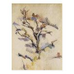 Paul Cezanne- el roble Postal
