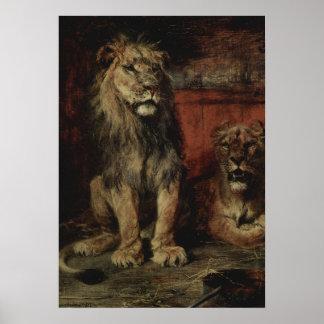 Paul Friedrich Meyerheim - Lions Posters