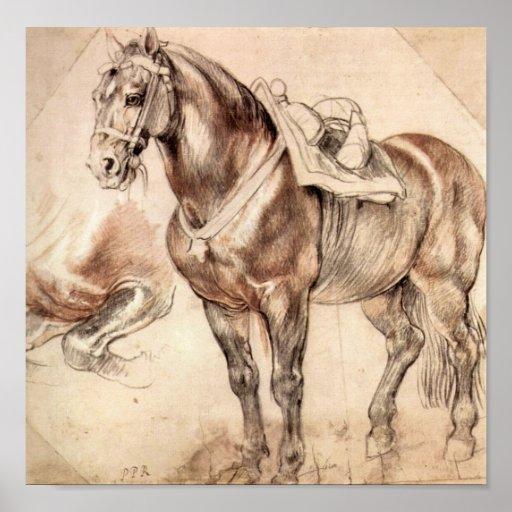 Paul Rubens - estudios del caballo Póster