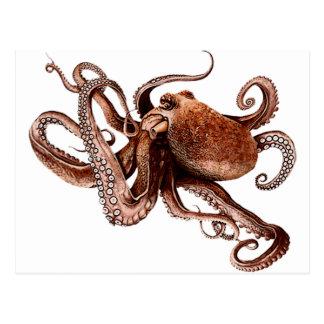 Paul The Octopus Postcard