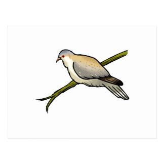 Paulette Pigeon.png Postal