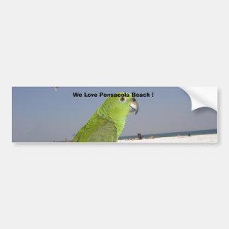 paulie beach, We Love Pensacola Beach ! Car Bumper Sticker