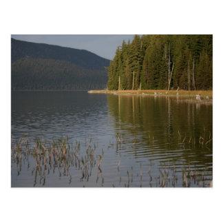 Paulina Lake, Oregon Postcard