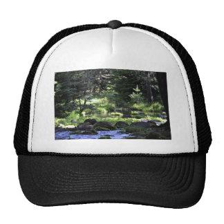 Paulina Springs Trucker Hat