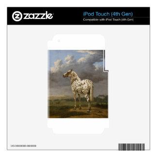 "Paulus Potter - The ""Piebald"" Horse. Vintage Image iPod Touch 4G Skins"