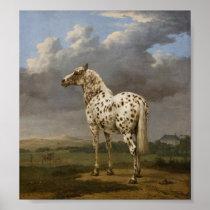 "Paulus Potter - The ""Piebald"" Horse. Vintage Image Poster"