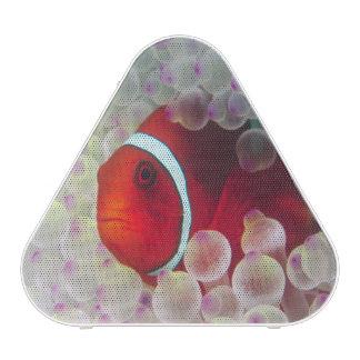 Paupau New Guinea, Great Barrier Reef, Bluetooth Speaker