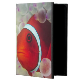 Paupau New Guinea, Great Barrier Reef, Case For iPad Air