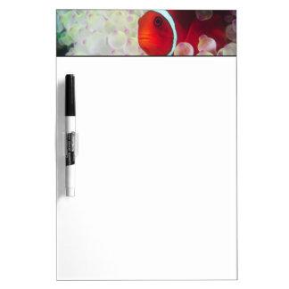 Paupau New Guinea, Great Barrier Reef, Dry-Erase Whiteboard