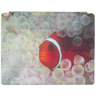 Paupau New Guinea Great Barrier Reef iPad Cover
