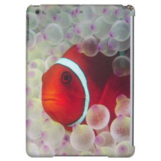 Paupau New Guinea, Great Barrier Reef, iPad Air Cover
