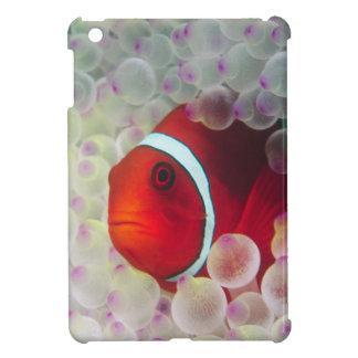 Paupau New Guinea, Great Barrier Reef, iPad Mini Cases