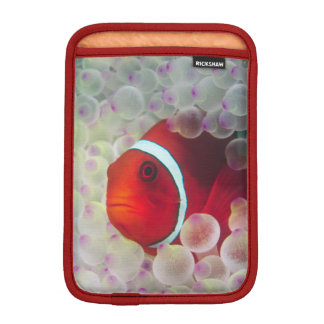 Paupau New Guinea, Great Barrier Reef, iPad Mini Sleeve
