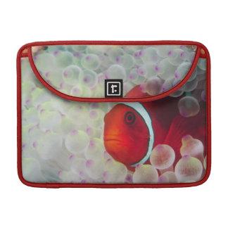 Paupau New Guinea Great Barrier Reef MacBook Pro Sleeve