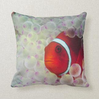 Paupau New Guinea Great Barrier Reef Pillows